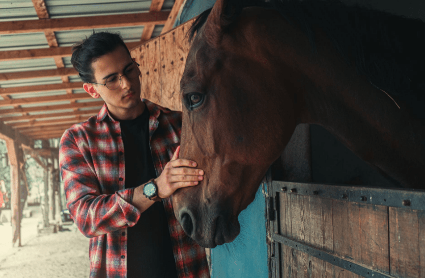man-holding-horse-s-fface